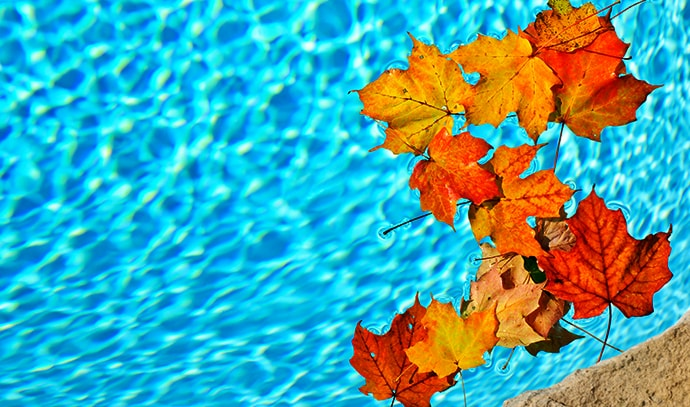 Pool Maintenance this Autumn