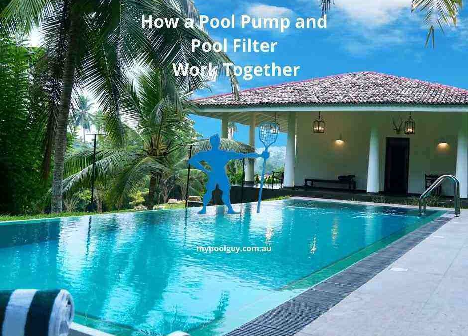 How a Pool Pump and Pool Filter Work Together