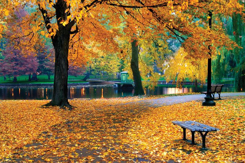The Best Autumn Destination in Australia